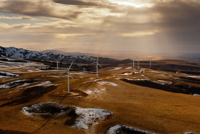 How to invest with an environmental investor